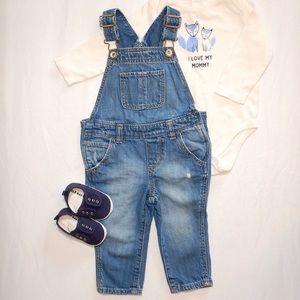 Denim Overalls Toddler Unisex